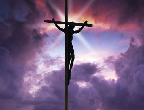 Easter Message from President Fr. Kevin Storey, CSB